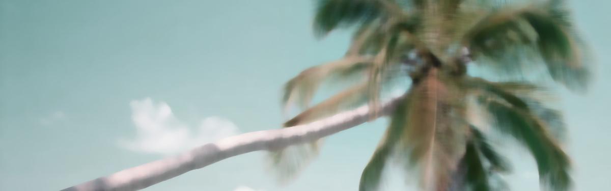 island-in-the-sun